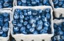Консумацията на боровинки намалява вероятността от сърдечносъдови заболявания