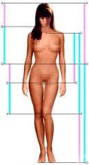 Учените създадоха портрет на идеалната жена