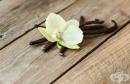 Екстракт от ванилия може да предотврати възпалението на кожата при псориазис