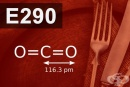 E290 Въглероден диоксид