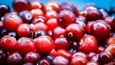 Червена боровинка - ползи за здравето