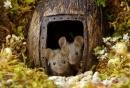 Фотограф създаде миниатюрно село за семейство мишки, живеещо в неговата градина