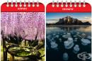 12 природни явления, които може да видите само в определено време на годината