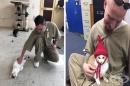 Затвор в Индиана позволява отглеждането на котки, които променят затворниците