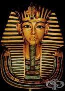 Методи на мумификация като част от историята на египетската медицина