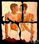 История на човешката сексуалност