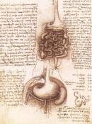 Първа операция на апендикс от 1735-та