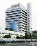 """Развитие на германската компания """"Шеринг"""" на американския пазар през 80-те години на 20-ти век"""