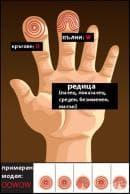 Научете повече за късмета и личностните си черти от вашите пръстови отпечатъци (2 част)