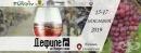 Богата културна програма очаква посетителите на традиционното Дефиле на младото вино