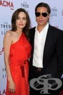 Анджи и Брад Пит оглавиха класацията за най-стилна двойка