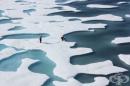Защо трябва да ни пука за топенето на ледовете в Арктика
