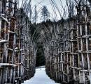 Божествени сили на природата изнасят литургия в магическа катедрала, създадена от живи, дишащи дървета (Галерия)