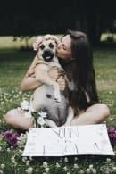 Очарователната фотосесия на едно бременно куче