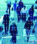 Защо са важни генотиповете?