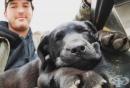 Глухонеми приятели: Мъж осиновява куче и го учи на жестомимичен език