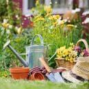 Как да си направите цветна градина у дома?