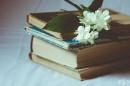 5 класически романа, които всеки трябва да прочете