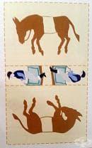 """Упражнение за трениране на дясната хемисфера за хора с доминантна лява хемисфера на мозъка (пъзел """"Магарета фокусници"""")"""