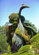 Фестивал на градинарското изкуство, Монреал 2013