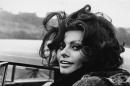 Кои сме ние и колко струват мечтите ни – за София Лорен и Алеята на славата