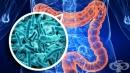Промени в нормалната микрофлора при лечебни въздействия