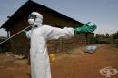 СЗО: Вирусът Ебола вече не представлява международна заплаха
