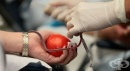 Нова интернет страница информира за донорството и трансплантациите