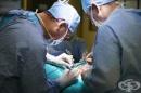 """Екипът на доц. Николай Белев от УМБАЛ """"СВ. Георги"""" спаси от трансплантация на черния дроб петгодишно момиченце"""