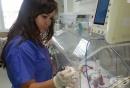 """Тревожен ръст на недоносени новородени отчитат в УМБАЛ """"Дева Мария"""" - Бургас"""