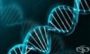 Български лекари с откритие при невродегенеративните заболявания