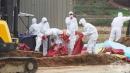 Ново огнище на птичи грип в Ямболско