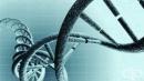 Препрограмирането на Т-клетките ще се използва за борба с автоимунните заболявания