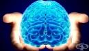 Шизофренията може да бъде лекувана с лекарства, които блокират или понижават клетъчната реакция