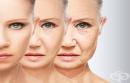 Учени откриха вещество, което може да обърне процеса на стареене