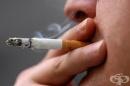 Депутатите решиха кутиите с цигари да са със стряскащи картинки