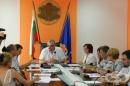 Комисията за контрол на епидемиите във Видин дискутира случаите на африканска чума по свинете