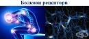 Болкови рецептори (ноцирецептори)