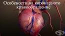 Особености на коронарното кръвообращение