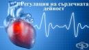 Регулация на сърдечната дейност