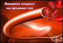 Линейна скорост на кръвния ток