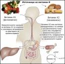 Физиологично значение на витамин К