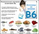 Физиологично значение на витамин В6