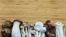 Ползи на медицинските гъби при автоимунни заболявания