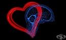 Практически примери за силно развита емоционална интелигентност