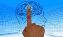 Как да изследваме важни черти в характера на отсрещния