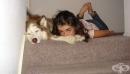 Домашният любимец подобрява емоционалното и физическото благополучие на тийнейджърите