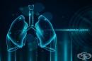 Защо коронавирусът SARS-CoV-2 се размножава по-бързо в горните дихателни пътища
