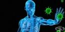 В добро състояние ли е имунната ви система?