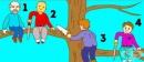 Кой ще падне първи от дървото?